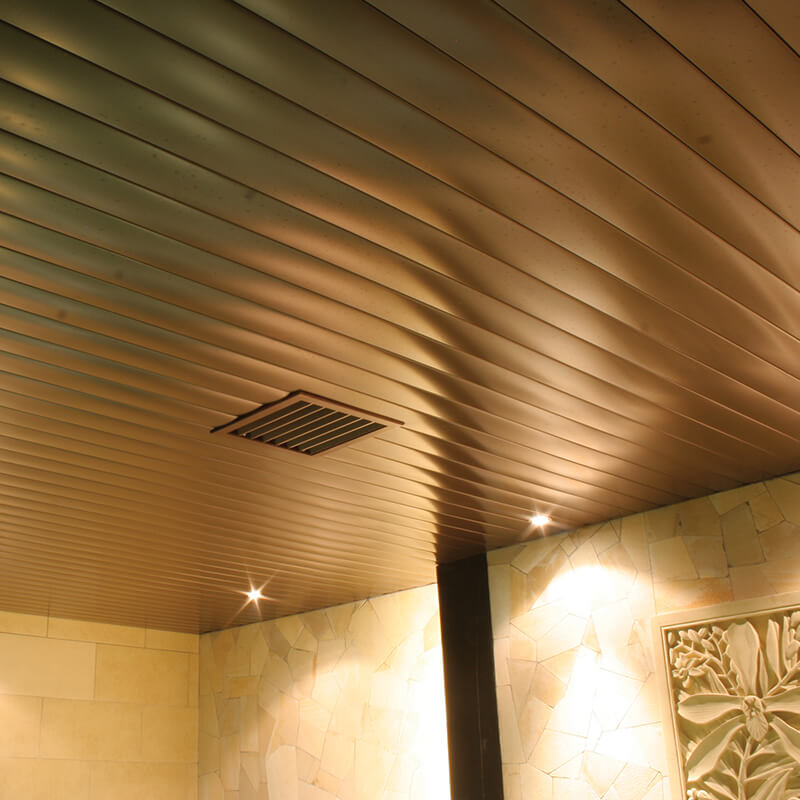 Steam Ceiling by Sonic Steam and Suana